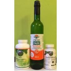Balíček MTT moringa-tragant-topinambur + Aloe vera šťava 500 ml + Bio moringa oleifera 120 kapsúl prémium