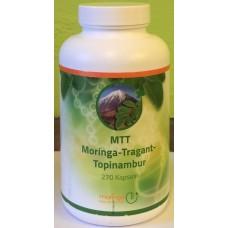 MTT moringa-tragant-topinambur