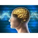 Samostatná protistresová terapia